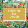 Follow-up Pet Flower Essence Consult
