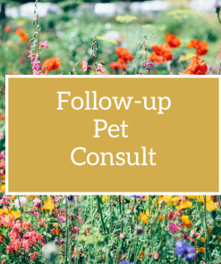 Follow-up Pet Flower Essence Consult