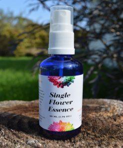 Single flower essence